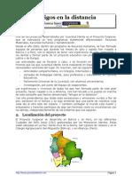 PDF Amigos en La Distancia