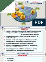 (3)a CICLO CELULAR - Arteaga M. Modif..pptx