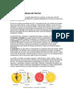 Frutic. II. Madurez - Cosecha. 2018