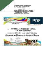 Informe de Yorbelis Cruz