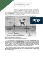 312136994-Practica-2-Ciclos-Biogeoquimicos.doc