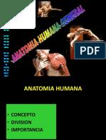 Anatomia Humana (1)