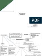 Mapa Conceptual_rosmary Alarcon