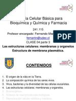 2019-004c BCB FMA CLASE Sist endomembranoso 10m.pdf