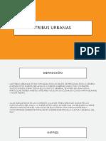 Tribus Urbanas México