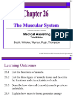 Muscular_System Mcgrawhill.ppt