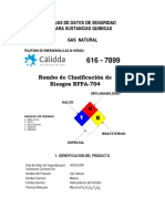 51. Gas Natural.pdf