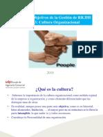 Tema 3 Cultura Organizacional