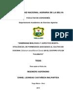 CMDL_2015.pdf