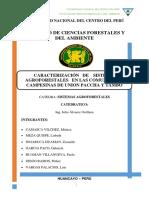 CACACARACTERIZACION.docx