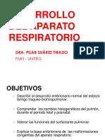Desarrollo a. Respiratorio 2019