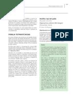 MANEJO ACAROS cap 8-12 acaros.pdf