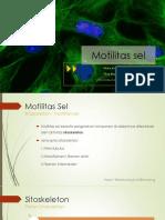 Sitoskeleton Biologi Sel