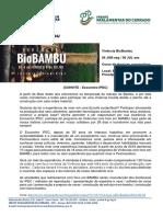 Vivência BioBambu