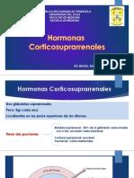 3. Hormonas Corticosuprarrenal Terminada