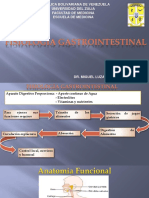 7. Fisiologia Gastrointestinal Dr. Miguel