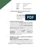 Recurso de Apelacion de Sentencia - Luis Ricardo Beraun Echevarria