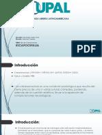 Escafocefalia'Slide