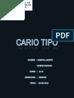 CARIO TIPO.docx