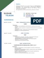 C.v - 2019 -Susan Tejeda Rivas