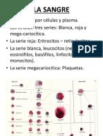 Clase Teórica-Sistema Tegumentario y Anexos