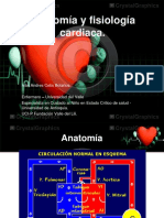 Anatomía y fisiología cardiaca.pdf