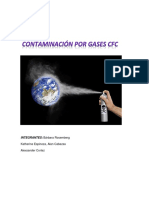 Contaminación Por Gases CFC