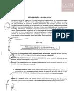 Pleno Jurisdiccional Distrital Civil Del Santa 2019