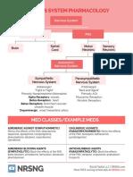 33 Nervous System Handout_01 copy.pdf