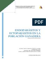 Trabajo de Investigacion Endoparásitos y Ectoparásitos en La Poblacion Ganadera
