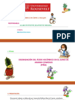 Sustentación de Bromatologia Piña