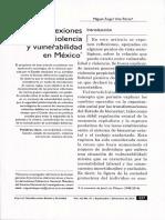 Reflexiones Sobre La Violencia y Vulnerabilidad en Mexico