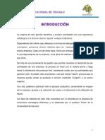 CADENA DE VALOR INFORME _.pdf