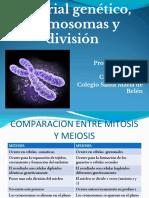 Material Genético, Cromosomas y División