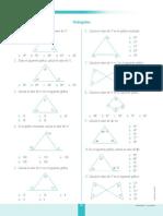 Triángulos_1_corefo.pdf