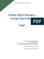 Informe FOD