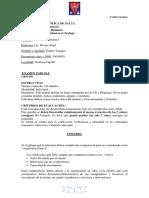Examen Parcial Emilce Vazquez