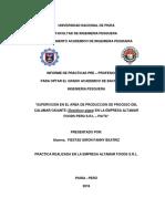Informe Final de Practicas Fanny Fiestas Giron