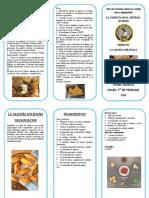 LA CASCARA DE HUEVO.pdf