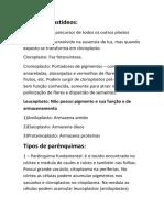 Tipos de Plastideos, parênquimas, sistemas radiculares e arquitetura caulinar