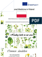 traditional medicine - poland