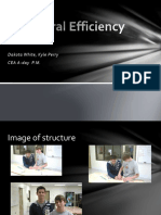 structural_efficiency.pptx