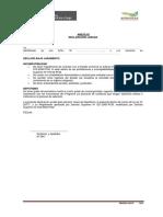 Anexo 02 Declaración Jurada