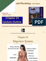 Chapt24 Digestive System
