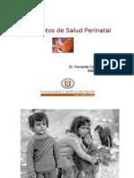 Conceptos SP perinatal