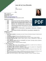 CV Irene de La Cruz Abrev