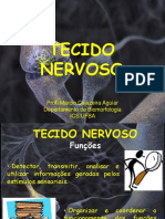 Aula Xerox Tecido Nervoso Fonoaudiologia 4-05-16