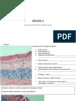 Práctico respiratorio (1).pdf