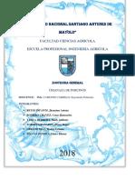 Universidad Nacional Santiago Antunes de Mayolo