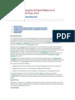 Análisis de La Situación de Salud Pública en El Departamento de Puno